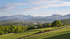 Lovely morning in Snowdonia (Keartona) Tags: snowdonia view scenery mountains snowdon landscape northwales wales llandecwyn harlech morning sunny fields woods beautiful