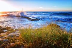 ... (Theophilos) Tags: sea sky clouds wave splash grass sunset rethymno crete θάλασσα ουρανόσ σύννεφα κύματα χόρτα δύση ρέθυμνο κρήτη
