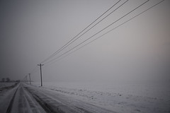 (Tom Roadcap) Tags: power storm road ice winter snow asphalt tree field empty cold icy corn