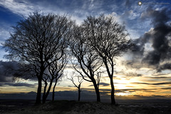 Seven Sisters round barrow, Copt Hill (Silent Eagle  Photography) Tags: sep silent eagle photography canon canoneos5dmarkiii copthill sevensisters seven sisters round barrow sky nature tree clouds sunset outdoor orange bernacer sunderland northeast tynewear silhouettes