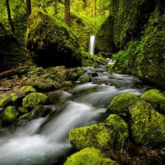 Mossy Grotto Falls Square (Rob Kroenert) Tags: mossy grotto falls columbia river gorge ruckel creek trail oregon pacific northwest waterfall moss rocks usa green long exposure mossygrottofalls