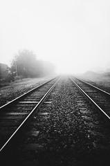 foggy morning (L. Paul) Tags: vivitarultrawideandslim vuws vivitarultrawideslim 22mm blackandwhite film shootfilm ishootfilm