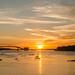 Sunset , Paraguay River - Pantanal - Brazil