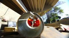 Teatrao-48claudio (Prefeitura de São José dos Campos) Tags: obrateatrão funcionáriourbam emprego trabalhador pedreiro construção claudiovieira