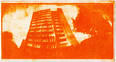 Sweet pepper for photography? Works! (batuda) Tags: analog analogue alternative anthotype paper arches coldpressed 12x24 pinhole obscura stenope lochkamera coffeecan color colour red orange yellow pepper emulsion inkjet transparency 3m architecture building house purėno kaunas lithuania lietuva altprocess print plant plants