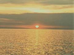 porec croatia june 2017 oneplus3 sunset sea adriatic (Photo: Song-to-the-Siren on Flickr)