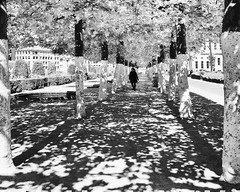 Near the Mont Des Arts, Brussels, Belgium (Sally E J Hunter) Tags: brussels belgium park blackwhite blackandwhite noiretblanc perspective bruxelles shadows zwartenwit belgique belgïe