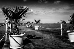 Shapes and Shadows (Anthony P26) Tags: category flora kemer places seascape travel turkey wood structure pier plants planters shadows shapes lines ropes fence sea water mediterranean sky bluesky clouds whiteclouds outdoor outside beach travelphotography coast coastal seaside canon canon70d canon1585mm blackandwhite whiteandblack bw monochrome