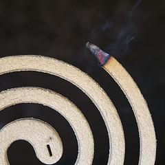 @Poisonous_ (nicolamarongiu) Tags: macromondays poisonous explore