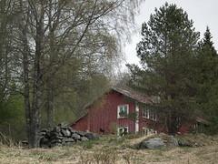 Landsverk, deserted farm (Akbe) Tags: landsverk iveland trehus oldfarm gammelgård