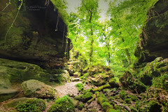 Mullerthal Trail, Luxemburg - explore (Rita Eberle-Wessner) Tags: wald forest felsen rocks trees bäume bach creek mullerthal mullerthaltrail trail wanderweg luxemburg luxembourg berdorf green grün canyon gorge felsenschlucht
