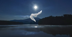 Moondance (R. Keith Clontz) Tags: moondance moonlight pricelake floatingfabric ghost nightscape dreamscape rkeithclontz grndfathermountain