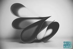 Week 24: Curves (bmurphy502) Tags: bnw blackandwhite abstract curves shapes design flower fleur blur waves dof tamron