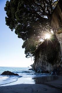 New Zealand - Mercury Bay (Coromandel Peninsula) [explored]