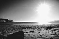 beach chilling bnw