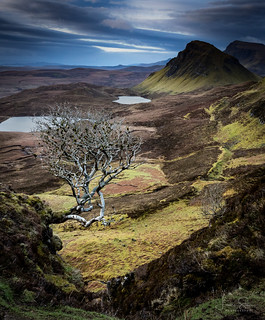 Morning at The Quiraing
