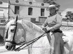 Día de San Isidro. Romería en Alameda(Málaga) (lameato feliz) Tags: jinete caballo fiesta romería alameda