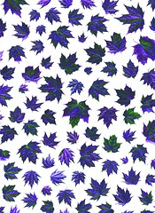 58188.09 Acer platanoides (horticultural art) Tags: horticulturalart acerplatanoides acer norwaymaple maple leaves pattern mosaic psychedelic