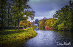 _DSF5093-91 (CrazyNotion (wandering and wondering)) Tags: brühl cologne germany garden river colours bensharif