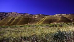Painted Hills 1 (woodchuckiam) Tags: paintedhills johndayfossilbedsnationalmonument colorfulhills hills lignite mudstone siltstone shale laterite fossilremains floodplandeposits scenic landscape oregon woodchuckiam