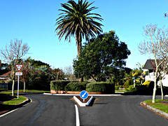Our Street (sallyNZ) Tags: scavenger13 directional roundabout ourstreet