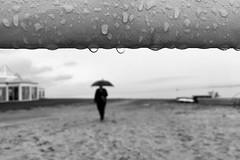 On a rainy day (Birdhouse camper) Tags: denmark shotoniphone6s rain umbrella iphone iphone6s silhouette droplets street blackandwhite blackwhite