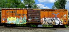 - nosey (timetomakethepasta) Tags: nosey42 zew freight train graffiti art boxcar rail box rbox benching selkirk new york photography