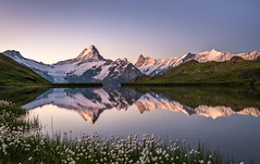calm morning (mainone) Tags: ngc wetterhorn clearsky berneroberland landschaft mirror nature swissalps mountains morning christiangehrig lake swiss bergsee mainone bachalp suisse grindelwald see schreckhorn first bachalpsee eiger natur sunrise sky alpen landscape schweiz mountain