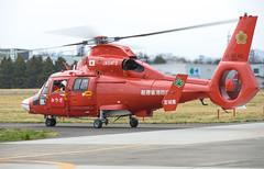 Eurocopter AS365N3 Dauphin 2 (Boushh_TFA) Tags: eurocopter as365n3 dauphin 2 as 365 n3 ja04fd 6960 miyagi aviation corps japan air selfdefense force jasdf kasuminome field open house rjsu sendai nikon d600 nikkor 70200mm f28 vrii