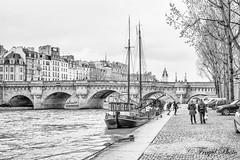Paris (fregul.photo) Tags: paris louvre architecture paysage notredamedeparis