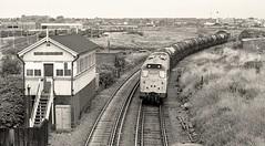 Milk run (Lost-Albion) Tags: 31148 d5566 oldoakjunction northlondonline milk railfreight willesden london pentax 1979