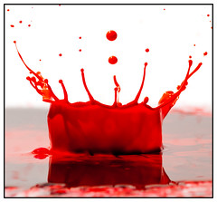 Paint Splash (EddieAC) Tags: macromondays dripsdropsandsplashes paint red black reflection