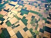 Patch work - Day 312 (wiedenmann.markus) Tags: klm landscape agriculture nature pattern patchwork fields holland