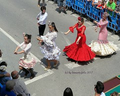 Día de San Isidro. Romería en Alameda(Málaga) (lameato feliz) Tags: alameda romería baile fiesta