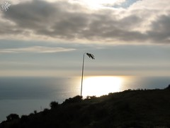 Manica a vento. Rollo (diegoavanzi) Tags: manicaavento windsock sole mare sun riflesso sea reflection nuvole clouds andora rollo liguria