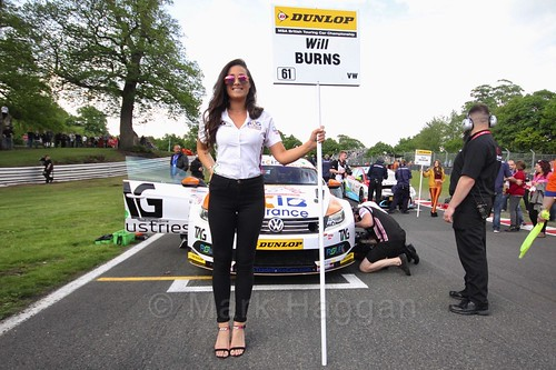 Will Burns on the grid at Oulton Park, May 2017