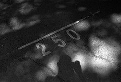 Crossing that line (RoryO'Bryen) Tags: line crossing roryobryen copyrightroryobryen rangefinder blackandwhite cambridgeuk summer leicasummiluxm35mmf14asph ilforddelta400 rodinal1100 2hrs standdeveloped leicamp film argentique analogue 35mm