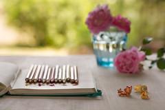 22/52 Lápices - Pencils (Nathalie Le Bris) Tags: crayon stilllife pen pencil bodegón