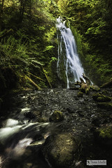 Madison Falls ~ Elwha rainforest (Thomas Schoeller Photography) Tags: madisonfalls elwha pacificnorthwest olympicpeninsula olympicnationalpark waterfallsofwashingtonstate lush rainforest forested deep forest