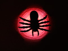 Incy Wincy (seanwalsh4) Tags: macromondays themesilhouette solidshape silhouette 2inchplasticspider toyspider backlit red black seanwalsh macro closeup arachnophobia fearofspiders canon bristol hmm happymacromonday frightening fright scare web sting fangs jump silk dangle pounce nature funny laugh joke silly