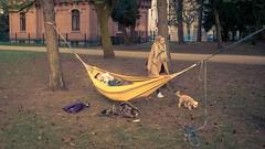 Hangout (toletoletole (www.levold.de/photosphere)) Tags: cologne fujix100f köln street people menschen paar park youngwoman jungefrau dog hund hammock hängematte couple
