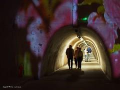 underground-tunnel-floraart_30