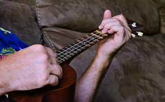 Project 365 - 6/7/2017 - 158/365 (cathy.scola) Tags: project365 odc ukulele hands music sound playing
