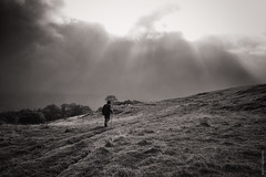 Cumbrian Strolling (Ian Smith (Studio72)) Tags: rx100 sonyrx100 sony uk england cumbria lakedistrict ambleside mountains countryside landscape walking walker man solitude sky clouds sunshine sunlight weather tracks following studio72