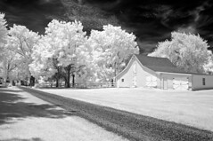 Infrared Barn (It's my whole damn raison d'etre) Tags: ir infrared barn black white bw monochrome nikon d90 eastern shore maryland talbot county md alex erkiletian