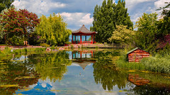 Reflections (mehmetyukselphotography) Tags: erzurum nature natural university life colorful city style lifestyle green red amazing sky clouds cloud canon 6d world travel tree reflection reflections water lake anatolia anadolu hayat photo photography