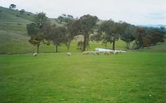 Lot 61 Greenmantle Road, Bigga NSW