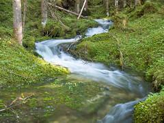 Strummen (turbok) Tags: bach landschaft strummen wasser c kurt krimberger