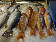 Fresh Fish (Steve Taylor (Photography)) Tags: fish singapore asia chinese market fishmonger ice
