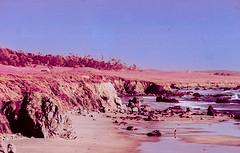 Infra-Pismo (carlfieler) Tags: canona1 70210mmlens fdlens aerochrome infrared infraredfilm 35mmfilm analog pismobreach california beach barn